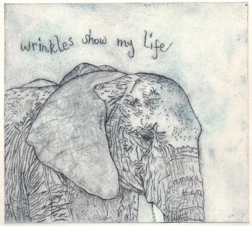 Wrinkles_elephant_grey_wide_thumb